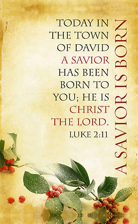 Christmas Parchment Series A Savior is Born Banner 4'x6'