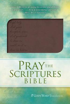 Pray the Scriptures Bible Brown Duravella