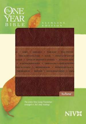 New International Version One Year Slimline Bible