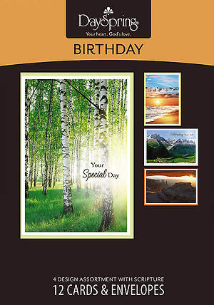 Majestic Light - Birthday Boxed Cards - Box of 12