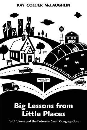Big Lessons from Little Places