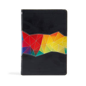 NIV Rainbow Study Bible