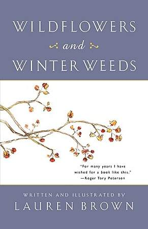 Wildflowers and Winter Weeds