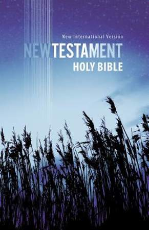 New International Version Outreach New Testament