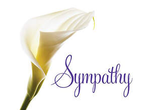 Church Letter of Sympathy Cards-NRSV (package of 12)