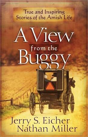 A View from the Buggy [Adobe Ebook]