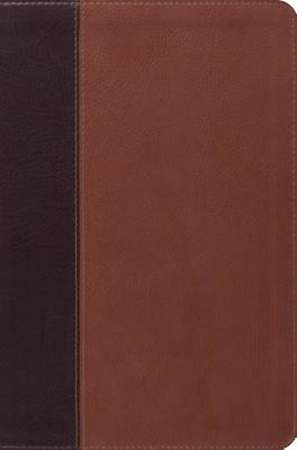 Single Column Legacy Bible (Trutone, Brown/Cordovan, Portfolio Design)