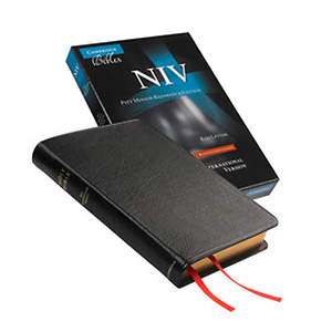 NIV Pitt Minion Reference Black Goatskin Bible