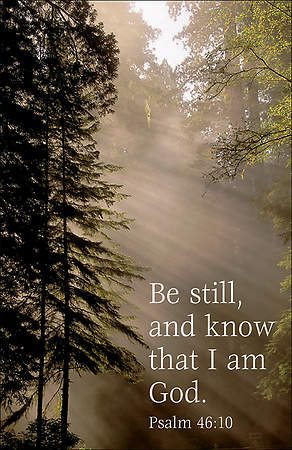 Be Still and Know Forest Bulletin, Regular Size (Package of 100)