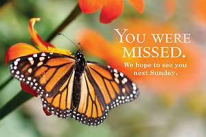 You Were Missed Butterfly Postcard (Package of 25)