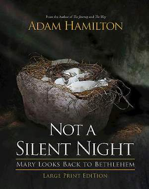 Not a Silent Night - Large Print Edition