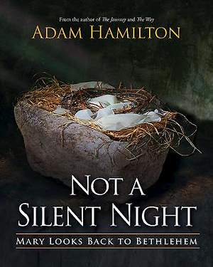 Not a Silent Night - eBook [ePub]