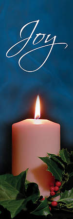 Photo Series Joy Blue Advent Banner 18