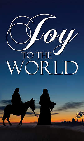 Nativity Series Joy to the World Banner 4' x 6'