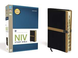 NIV Study Bible, Large Print Indexed