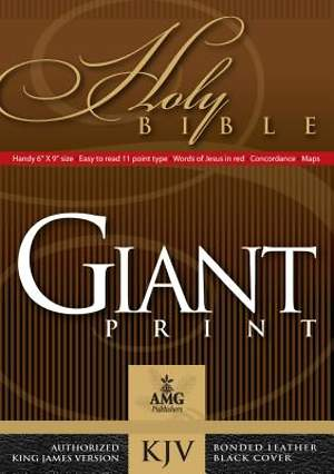 Giant Print Handy-Size Bible