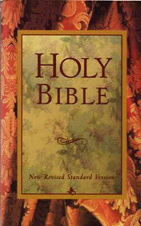 New Revised Standard Version Holy Bible